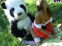 I've Always Wanted A Panda Bear To Fuck Me